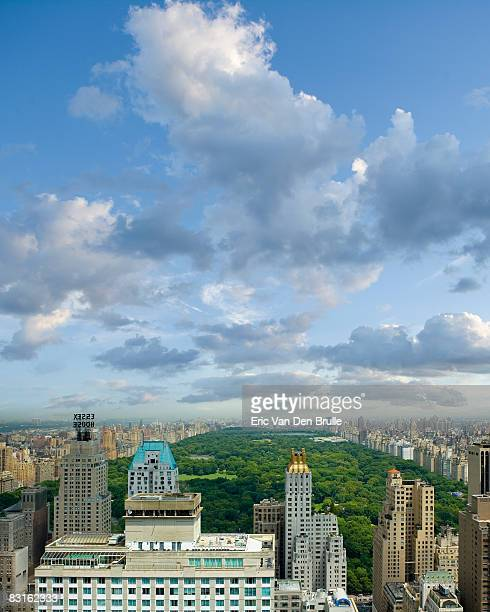 new york city skyline with central park - eric van den brulle stock pictures, royalty-free photos & images