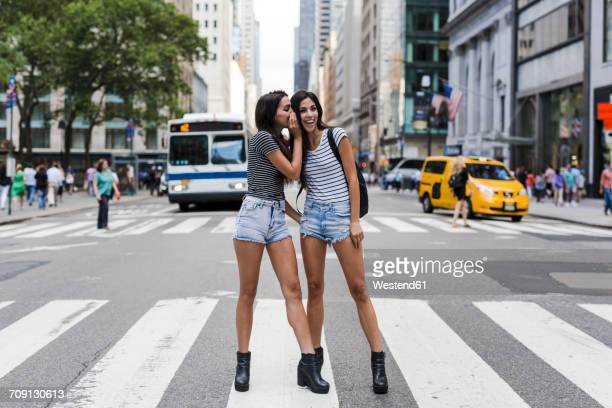usa, new york city, two twin sisters talking on zebra crossing in manhattan - na moda descrição - fotografias e filmes do acervo