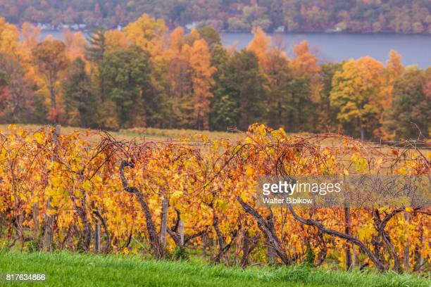 usa, new york, exterior - finger lakes stock pictures, royalty-free photos & images