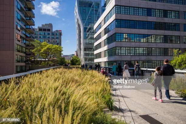 usa, new york, exterior - couleur verte photos et images de collection