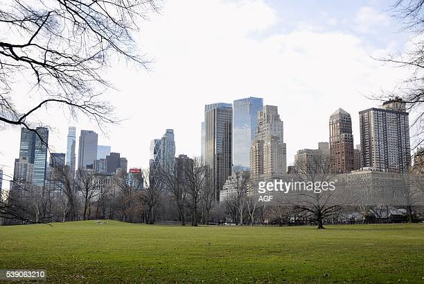 USA New York Manhattan skyscrapers viewed from Central Park
