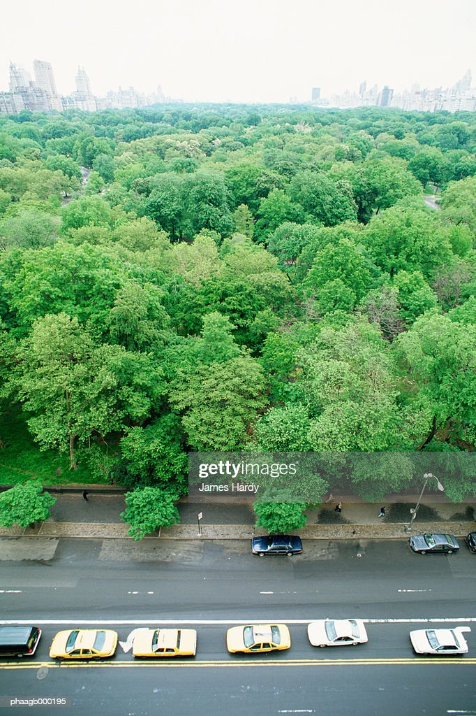 New York, Manhattan, taxis parked next to Central Park, high angle view : Stockfoto