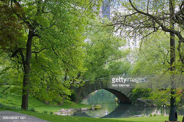 USA, New York, New York City, Central Park, bridge in park
