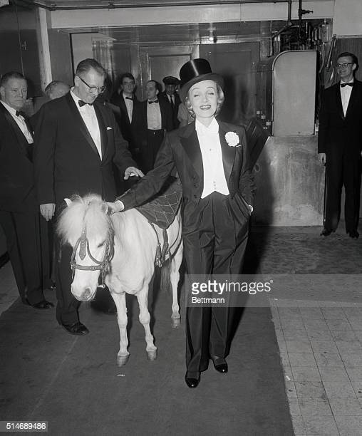 Film star Marlene Dietrich at the April in Paris Hall at the Waldorf Astoria Grand Ballroom Photo with shetlin pony