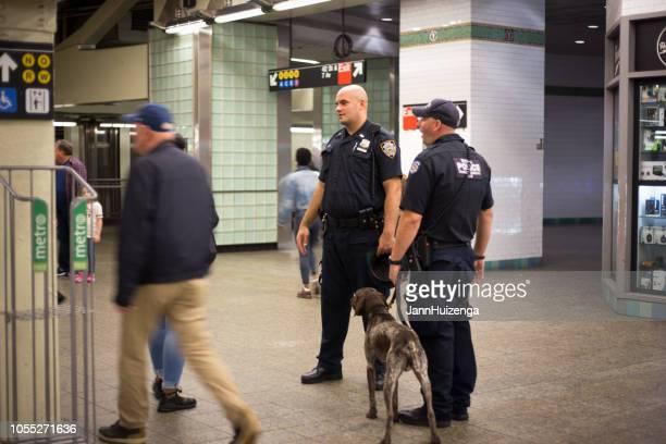 nova york, ny: policiais com o cachorro na estação de metrô - cão adestrado - fotografias e filmes do acervo