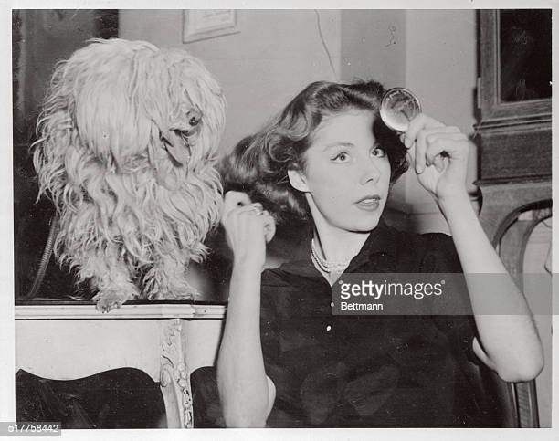 Park Avenue Puppies Her best friend and severest critic Pie Pie a snooty Maltese watches Countess Betsy Von Furstenberg adjust her tresses after...