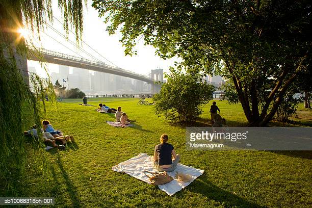usa, new york, people relaxing in park with skyline from brooklyn - brooklyn new york stock pictures, royalty-free photos & images