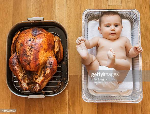 USA, New York State, New York City, Baked turkey and baby girl (2-5 months) in baking dish