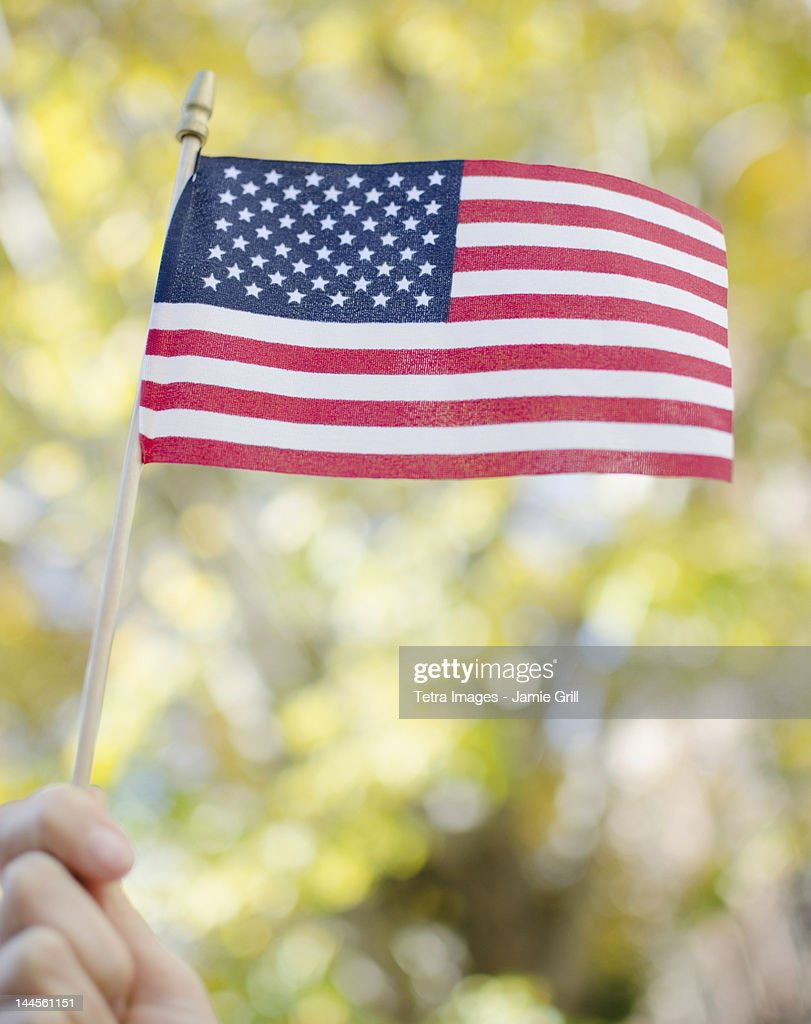 USA, New York State, New York City, Brooklyn, hand holding American flag : ストックフォト
