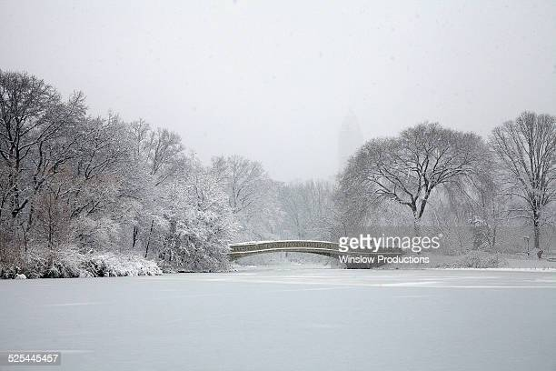 USA, New York State, New York City, Central Park at winter
