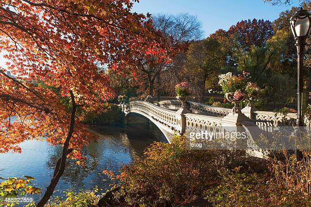USA, New York State, New York City, Footbridge over lake in Central Park