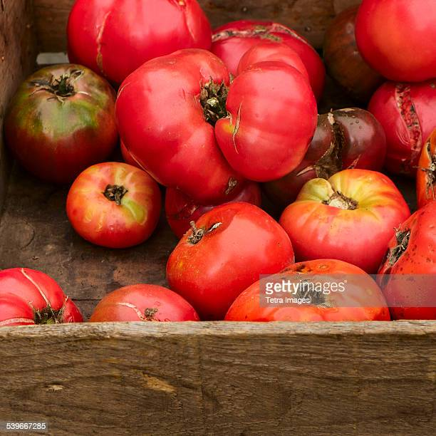USA, New York State, New York City, Heirloom tomatoes in crate