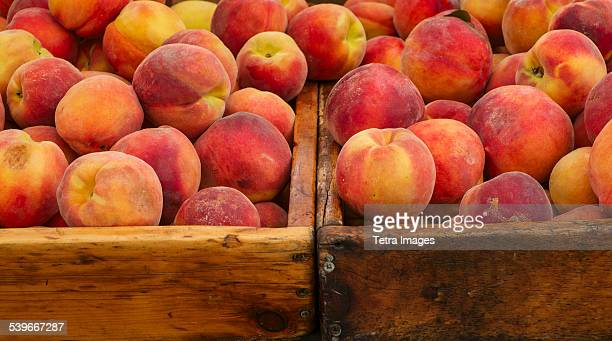 USA, New York State, New York City, Peaches in crates