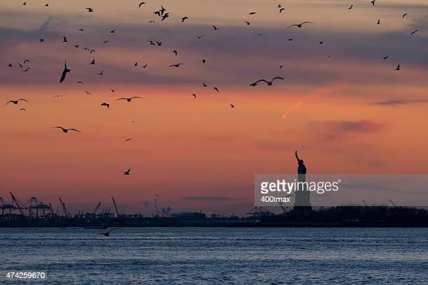 ニューヨークの夕日 - ニューヨーク湾 ストックフォトと画像