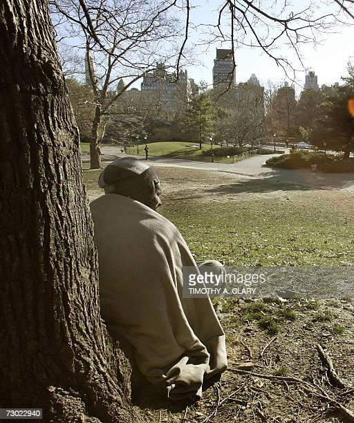 1 249 Man Sitting Under Tree Photos And Premium High Res Pictures Getty Images