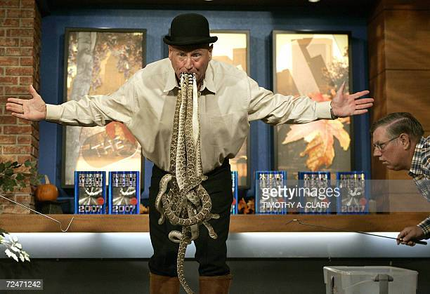 Jackie Bibby aka The Texas Snakeman holds in his mouth ten 2 ft 6inchlong western diamondback rattlesnakes for 125 seconds without any assistance at...