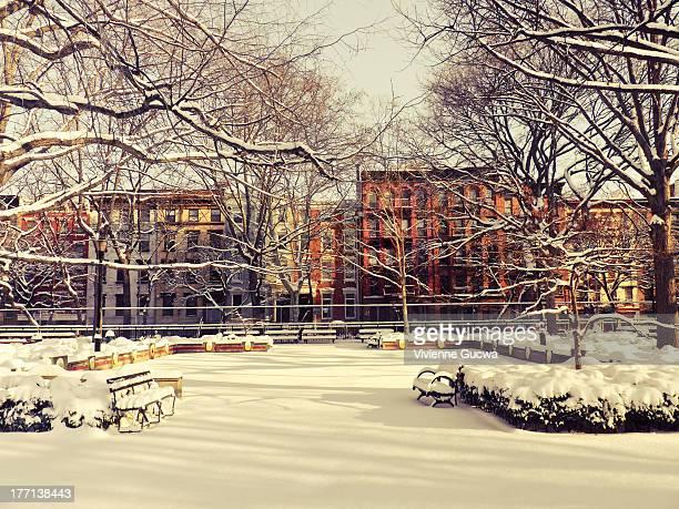 new york winter - tompkins square park - east village stock-fotos und bilder