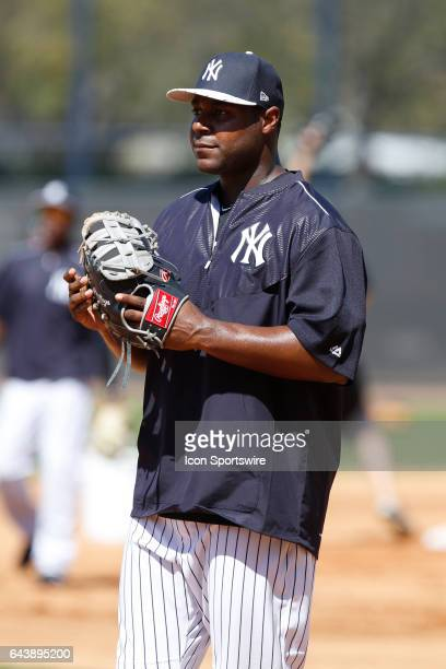 New York Yankees first baseman Chris Carter during a New York Yankees spring training workout on February 20 at George M Steinbrenner Field in Tampa...