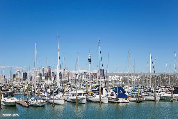 New Zealand, Auckland, Westhaven Boat Harbour, City Skyline with Sky Tower in the background, Central Business Disctrict