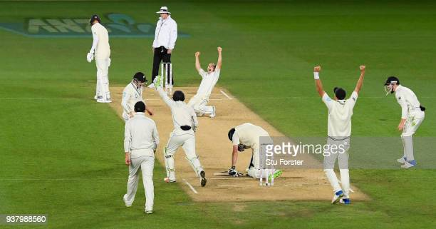 New Zealand bowler Todd Astle celebrates after dismissing James Anderson to win the match during day five of the First Test Match between the New...