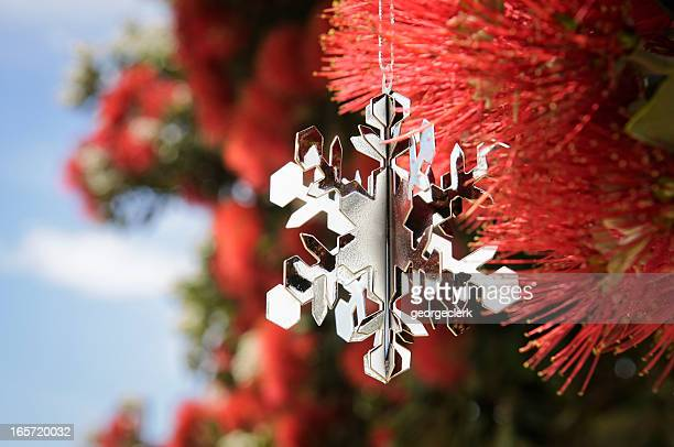 New Zealand: Christmas In Summer