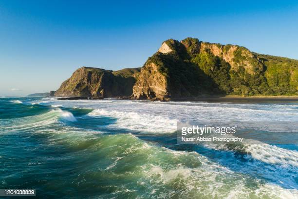 new zealand coastline. - nazar abbas photography stock pictures, royalty-free photos & images