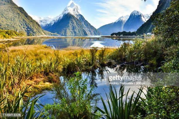 new zealand fiords in winter - region otago stock-fotos und bilder