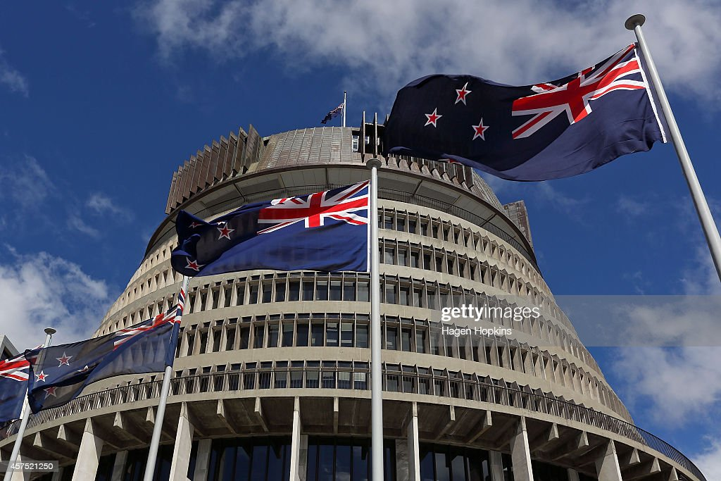 Official Opening Of The 51st New Zealand Parliament : News Photo