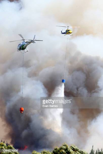 New Zealand Helicopters dump water to extinguish the blaze as 170 homes have been evacuated from the area in the Tasman district February 7, 2019 in...