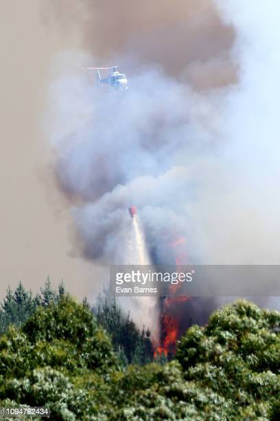 New Zealand Helicopters dump water to extinguish the blaze as 170 homes have been evacuated from the area in the Tasman district February 7 2019 in...