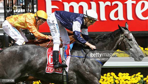 New Zealand horse Efficient with jockey Michael Rodd on board streaks home to win the Melbourne Cup ahead of Irish horse Purple Moon ridden by Damien...