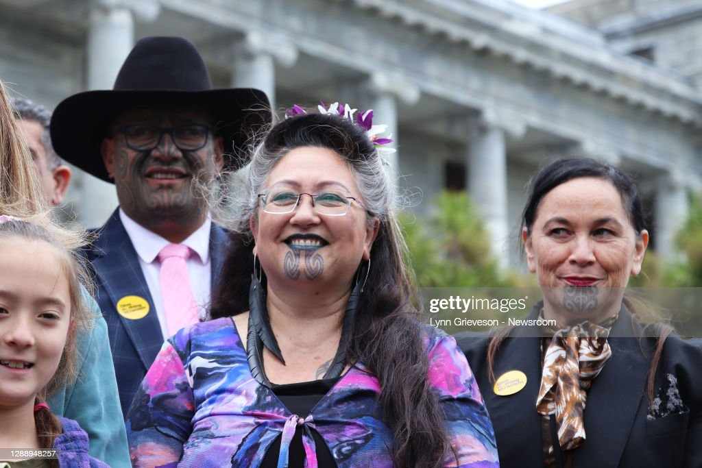 Petitions In Support Of Māori Wards Presented In Wellington : ニュース写真