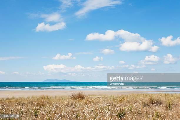 New Zealand, North Island, Coromandel region, Waihi Beach, South Pacific, beach