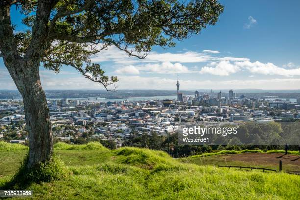 New Zealand, North Island, Mount Eden, Auckland, cityscape