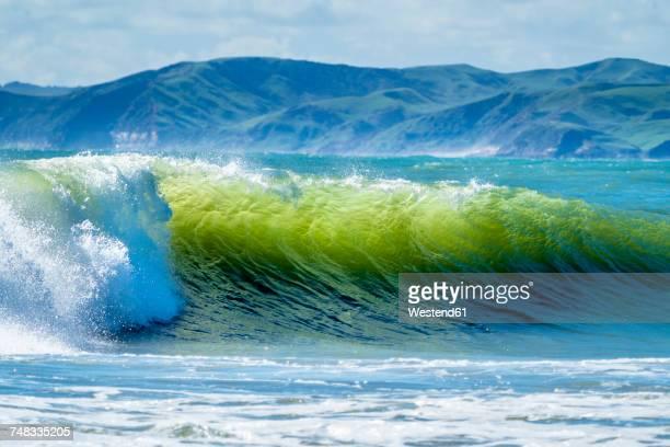 New Zealand, North Island, Raglan, Ngarunui Beach, Manu Bay, breaking wave