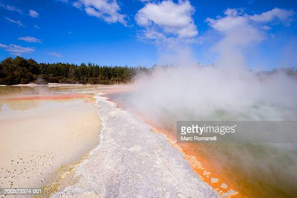 New Zealand, North Island, Rotorua Thermal pools at Waiotapu, beach and forest with smoky reaction of pools
