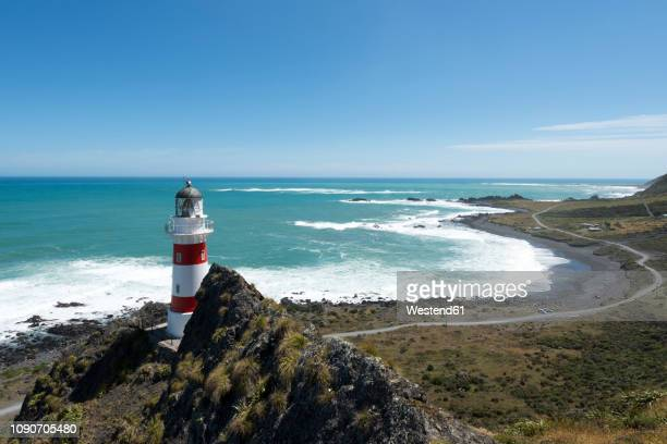 new zealand, north island, wellington, south wairarapa, cape palliser, lighthouse - cape stock pictures, royalty-free photos & images