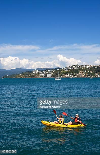 New Zealand North Island Wellington Waterfront Lambton Harbour People Kayaking