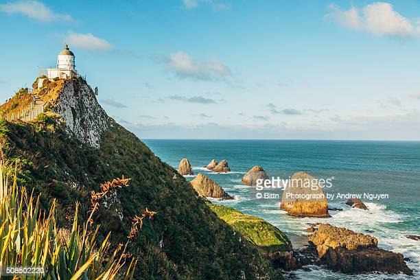 New Zealand - Nugget Point