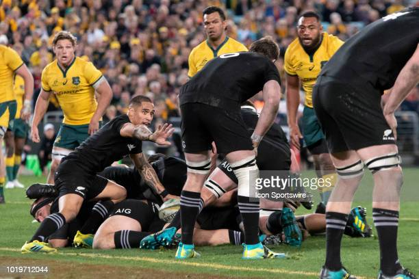 New Zealand player Aaron Smith calls his team back at the Bledisloe Cup rugby test match between Australia and New Zealand on August 18 at ANZ...