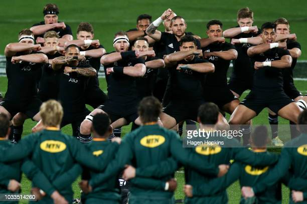 New Zealand players perform a haka during The Rugby Championship match between the New Zealand All Blacks and the South Africa Springboks at Westpac...