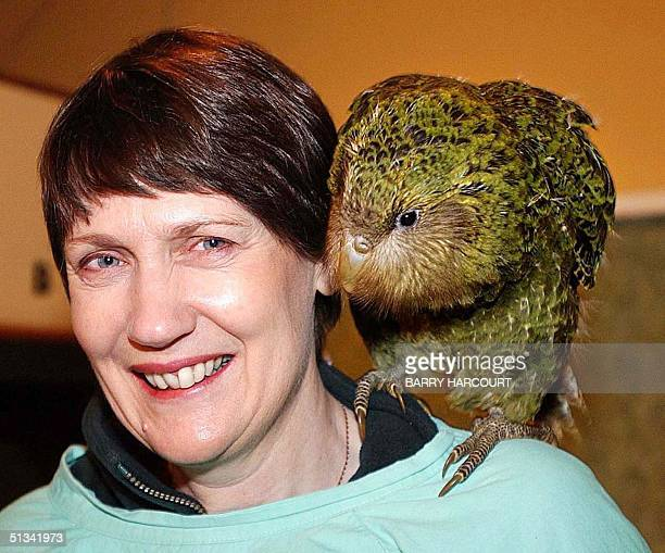 New Zealand Prime Minister Helen Clark carries on her shoulder an 11weekold kakapo chick named Marama during her visit to Burwood Bush the Department...