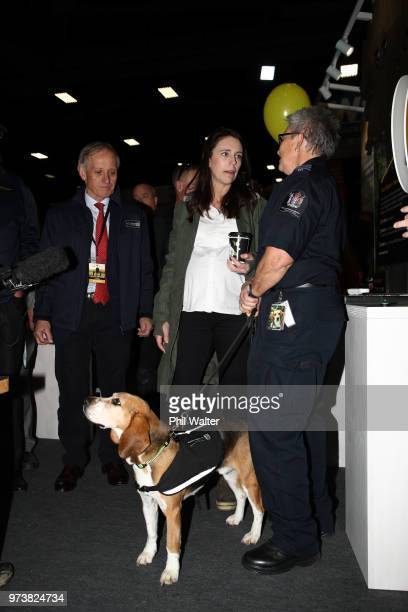 New Zealand Prime Minister Jacinda Ardern during a walkabout at the Mystery Creek Fieldays on June 14 2018 in Hamilton New Zealand The public...