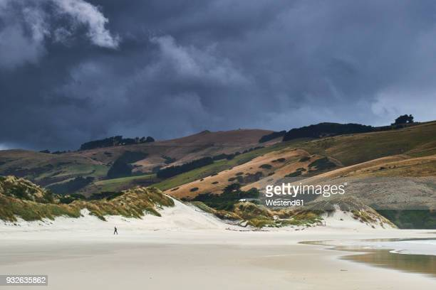 New Zealand, South Island, Dunedin, Otago Peninsula, dark clouds over Tomahawk Beach