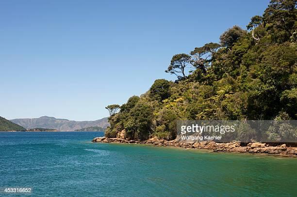 New Zealand South Island Marlborough Sounds Queen Charlotte Sound Ship's Cove Landscape
