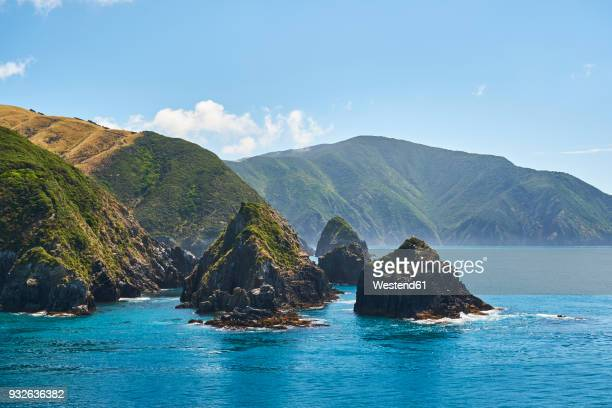 new zealand, south island, - marlborough new zealand stock pictures, royalty-free photos & images