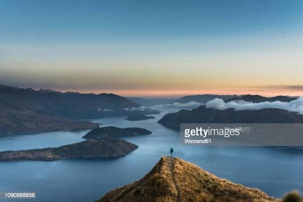 new zealand, south island, wanaka, otago, woman on coromandel peak at sunrise - otago stock pictures, royalty-free photos & images