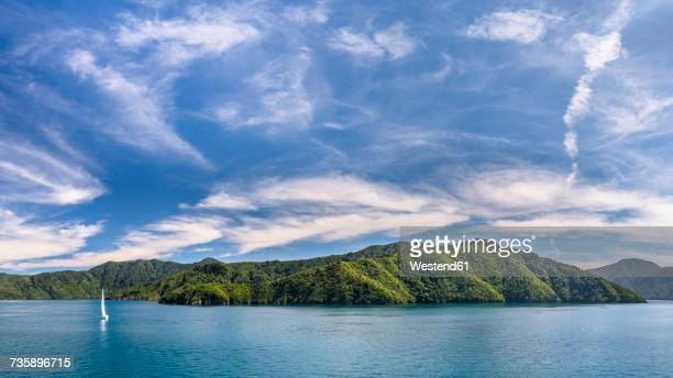 New Zealand, Southern Island, Marlborough Sounds National Park