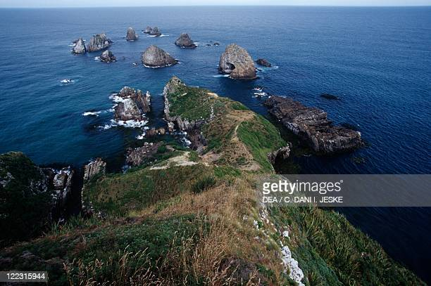 New Zealand Southern Island Southland Rocky islets at Nugget Point