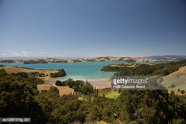 new zealand, waiheke island, landscape - heidi coppock beard photos et images de collection
